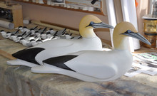 Northern Gannet Decoy