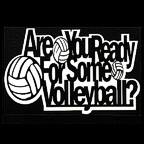 Are you Ready for some Volleyball?