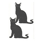 Black Cats - Package of 2
