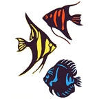 Tropical Fish - Package of 3