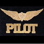Pilot with wings - laser etched gold!