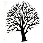 Tree - bare
