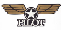 Pilot with Gold Wings