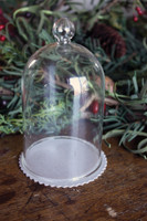 "Glass Dome 5"" Tall"