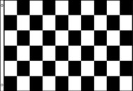 Checkered Flag Black and White