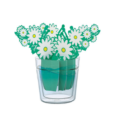Marguerite Daisy Paper Humidifier by natural evaporation