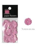 Piglet Flowers