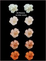 45118 Bridal Rose Apricot Set