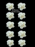 45110 Bridal Rose White