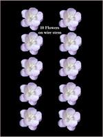 42275 Blossoms 2tone Lavender