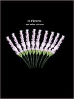 60130 Lavender Lilac
