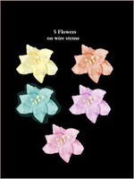 62030  Lillies Pastel SET