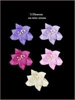 62045 Lillies Purple SET
