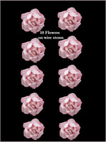 45135 Bridal Rose Musk