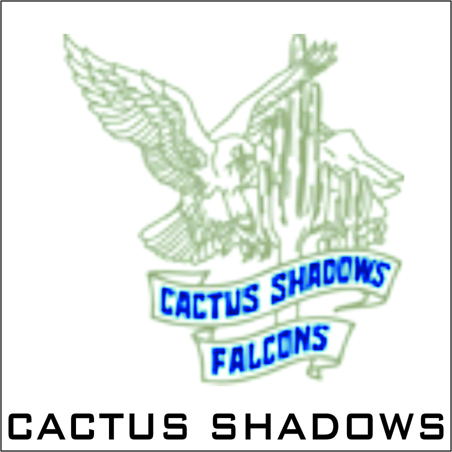 cactus-shadows-named.jpg