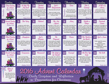 2016 Daily Scripture and Reflection Christmas Advent Calendar, Pack of 100