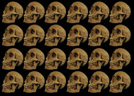 24  PIECE  SKULL RESIN CRANIUM  DEAL