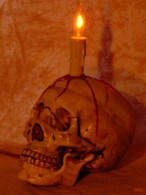 Lighted Skull Display, Life-Size Skull with Blood