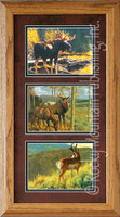 Mossy Bog, Greg Beecham Wildlife Art Framed Set 10x20
