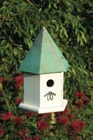 Copper Songbird in white with verdi roof.