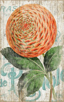 Vintage Sign - Orange Zinnia