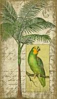 Vintage Parrot II Sign