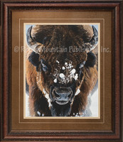 Winter Warrior - Buffalo Wildlife Art - Terry Isaac Close up of a snow covered buffalo