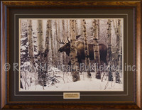A lone moose traversing a snowy forest landscape