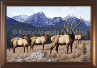 Back Tracking - Manuel Mansanarez Wildlife Art Giclee - Elk