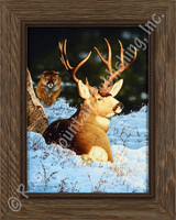 Blind Sided - Tom Mansanarez Wildlife Art | Cougar and Buck