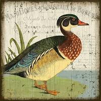 Vintage Duck I Sign