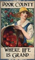 Vintage Apple Harvest Sign