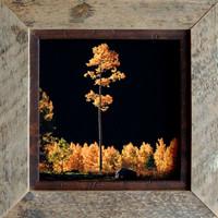 Rustic Frames-Square 8x8 Barnwood Frame with .5 inch Alder Inset