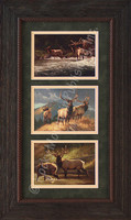 Elk Wildlife Art Triple Painting Set, Greg Beecham