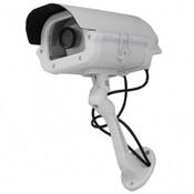 Streetwise Heavy Duty Dummy Camera in Outdoor housing w/ Light
