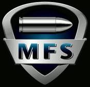 MFS 55 Grain 223 Rem Hollow Point - 500 Rounds
