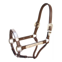 Western Havana Leather Silver Engraved Hardware Halter with Lead Chain By Aledo Saddlery