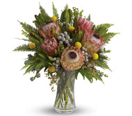 Today's SPECIAL. Beautiful Compacta Protea , Tetra Nuts and pink Geralton wax. Fresh in this morning . Makes a lovely long lasting flower arrangement.