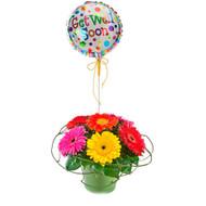 Rainbow - Get Well Bouquet
