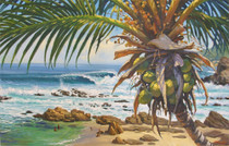 Costa Azul [Note Card Set of 6]