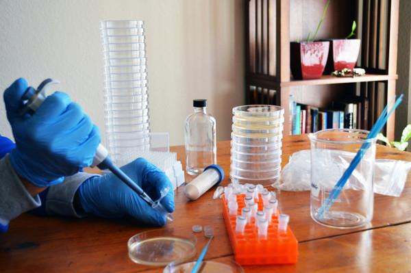 DIY Bacterial CRISPR Refill/Classroom Kit