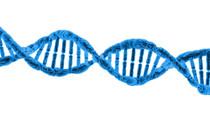 DNA Sequencing As a Service