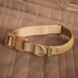 Alpha Dog Tactical Collar: tan with a Cobra buckle