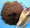 alkalized cocoa, dutched, superfood, superfoods