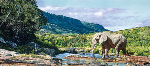 Monarch of Mwaluganje, by Guy Combes MASTERWORK CANVAS EDITION