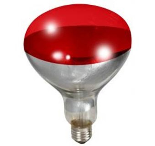 Helps maintain animal warmth. Designed to provide enough heat for small flocks. 250 Watt/120 Volt bulb is great for brooding chickens and other poultry. Alloy bulb with non-stick base and 6000 hour bulb life.      Designed to provide enough heat for small flocks     250 Watt/120 Volt bulb     Used for brooding chickens and other poultry     Alloy bulb with non-stick base     6000 hour bulb life