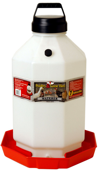 Large-capacity Automatic Poultry Waterer with vacuum-sealing O-ring cap creates an automatic water flow     Dent-proof, heavy-duty translucent plastic allows view of water level     Easy-to-fill jar snaps onto base     Rugged handle makes transport easy     Holds 7 gallons