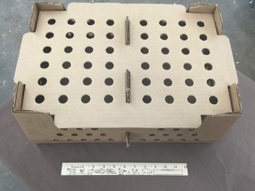 Chick Shipping Boxes 50 Count Box