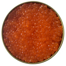 Washington Steelhead Trout Roe