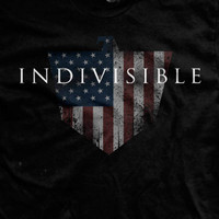 PREORDER Indivisible Ultra-Thin Vintage T-Shirt